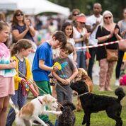 Children at Dog Show