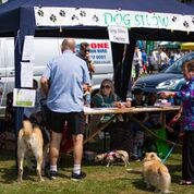 Dog Show tent